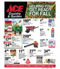 Ace September Flyer